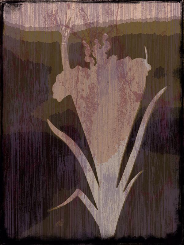 Kiss-M_FlowerPower_web